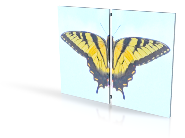 Butterfly box, Split Mirrored Lid 4in 3d printed