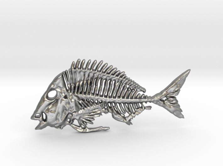 Littlehead Porgy Fish Skeleton Pendant 3d printed