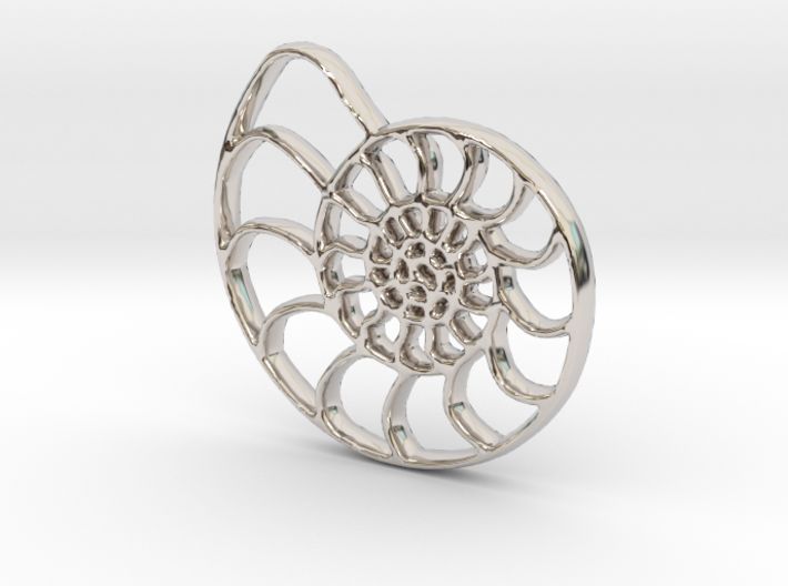 Shell Fossil 3d printed Shell fossil