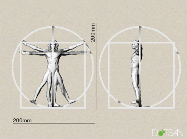 200mm High Vitruvian Man 3d printed