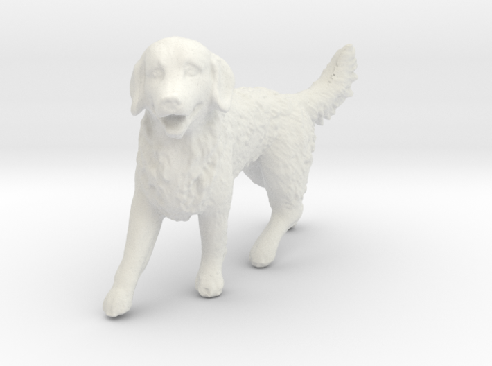 1/24 Golden Retriever Walking Male 3d printed
