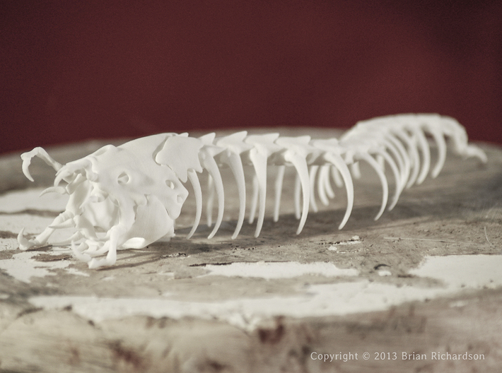 Mongolian Death Worm 3d printed