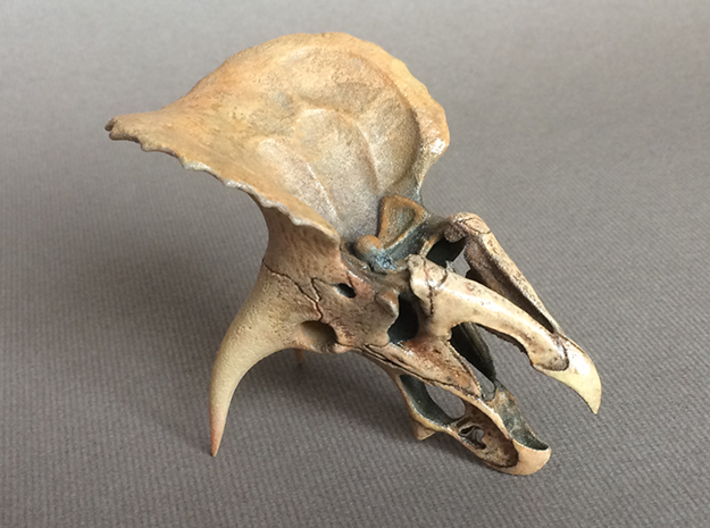Triceratops - dinosaur skull replica 3d printed Fully detailed