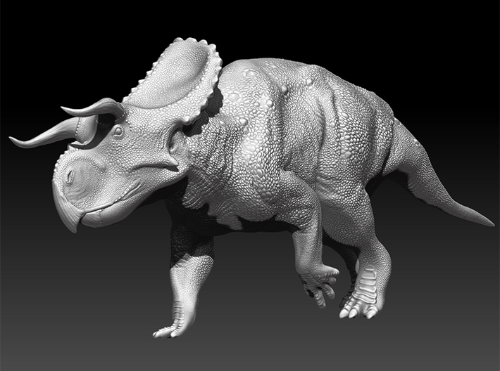 Nasutoceratops 1:40 scale model 3d printed