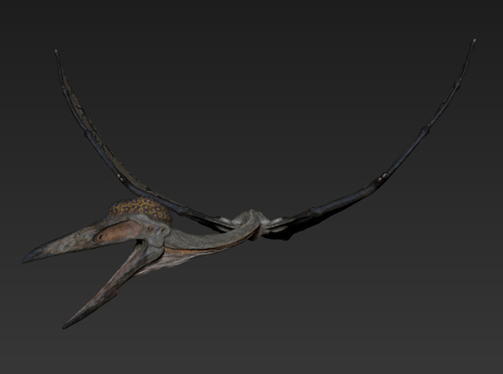 Quetzalcoatlus Flying (Small/Medium/Large size) 3d printed