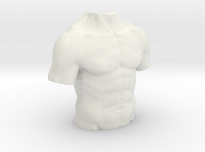 Anatomy torso sculpture 3d printed