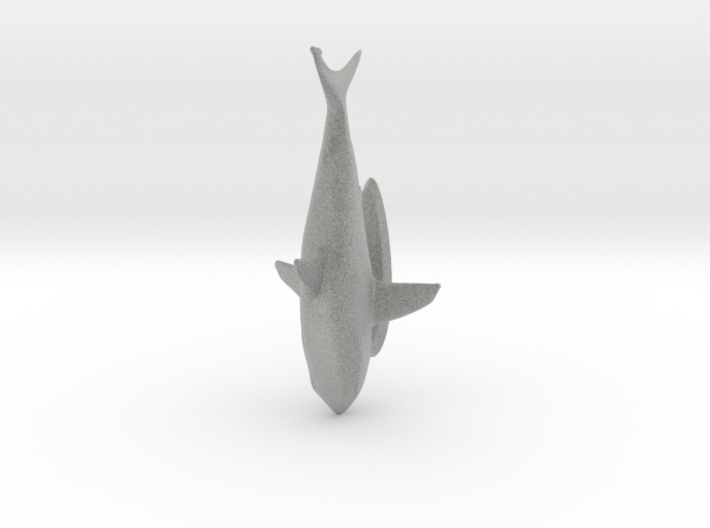 Great White Shark 3d printed