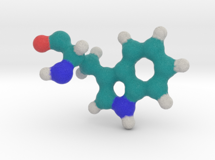Amino Acid: Tryptophan 3d printed