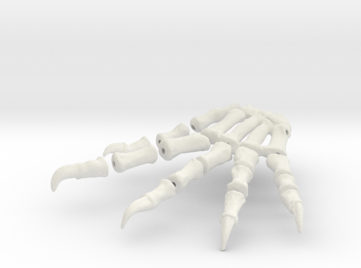 Komodo Right Foot Front 1:5 Scale 3d printed