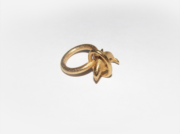 Dolplin Ring (US Size11) 3d printed Gold Plated Glossy