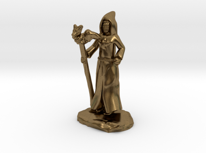 Dragon Cultist with Staff 3d printed