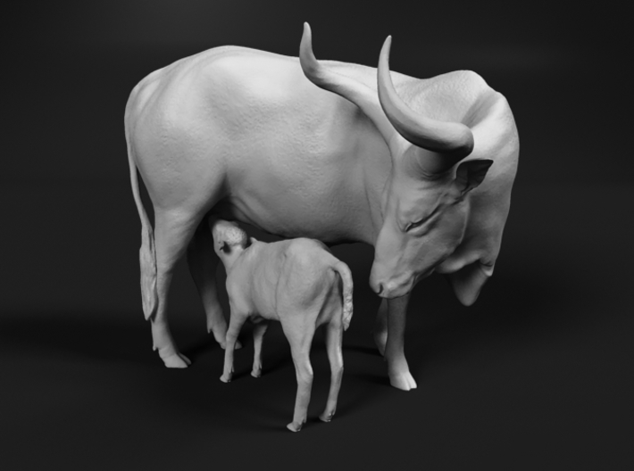 Ankole-Watusi 1:32 Mother and Calf 3d printed
