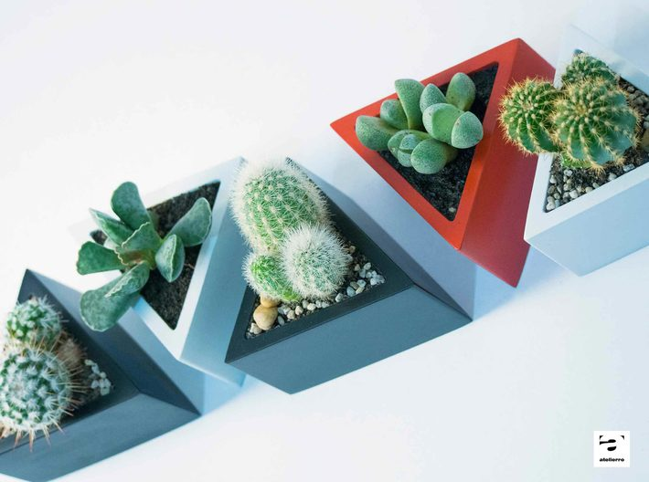 Prisma - planter for succulents and cactuses 3d printed Prisma 'S' size with a cactus