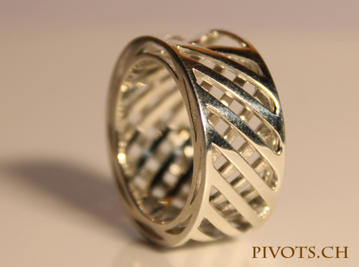 Double Wire Ring 3d printed Premium Silver