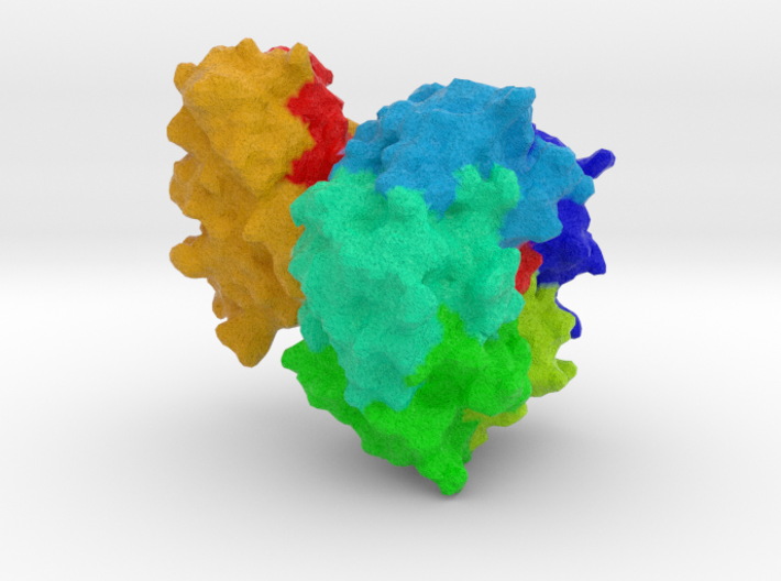 Heat-Labile Enterotoxin 3d printed