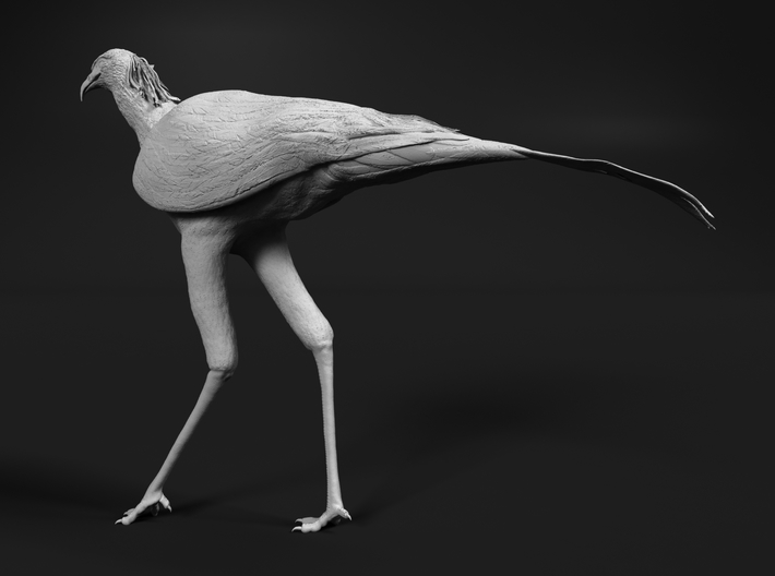 Secretarybird 1:22 Walking 3d printed