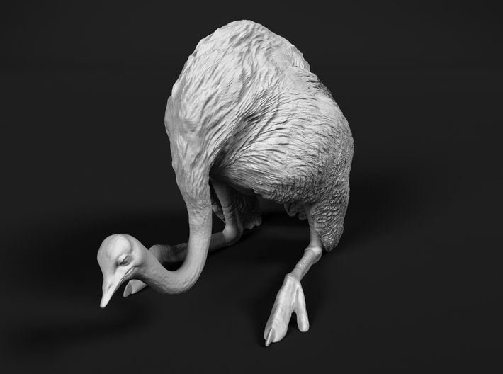 Ostrich 1:12 Guarding the Nest 3d printed