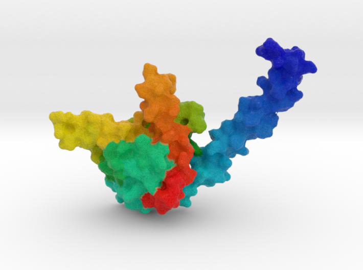 Nucleosome Assembly Protein 3d printed