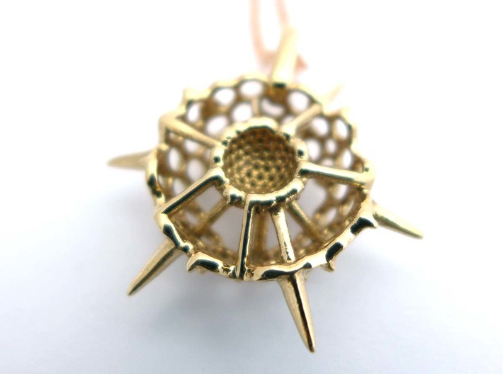 Small Spumellaria Pendant - Science Jewelry 3d printed Reverse side, polished bronze