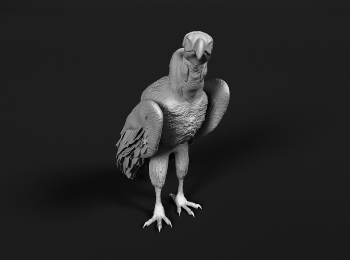 Lappet-Faced Vulture 1:20 Standing 3d printed
