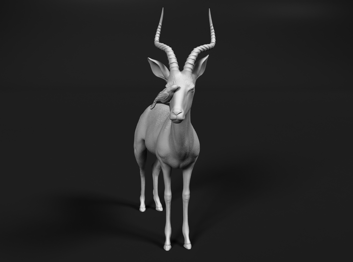 Impala 1:45 Male with Red-Billed Oxpecker 3d printed