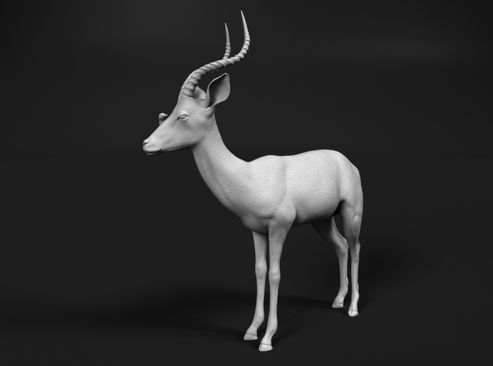Impala 1:24 Male with Red-Billed Oxpecker 3d printed