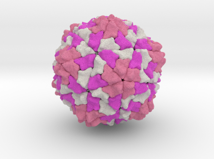 Rice Yellow Mottle Virus 3d printed