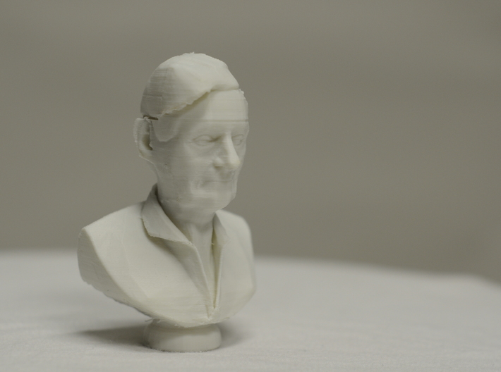 Portrayal of an Experienced Man 3d printed