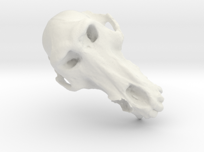 Bad Tooth Baboon 3d printed
