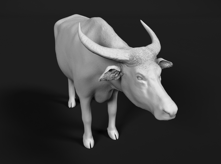 Domestic Asian Water Buffalo 1:45 Standing Male 3d printed