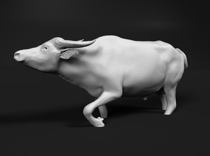 Domestic Asian Water Buffalo 1:64 Walks in Water 3d printed
