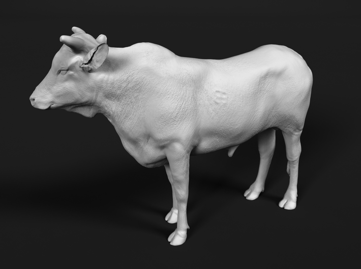 ABBI 1:76 Yearling Bull 1 3d printed