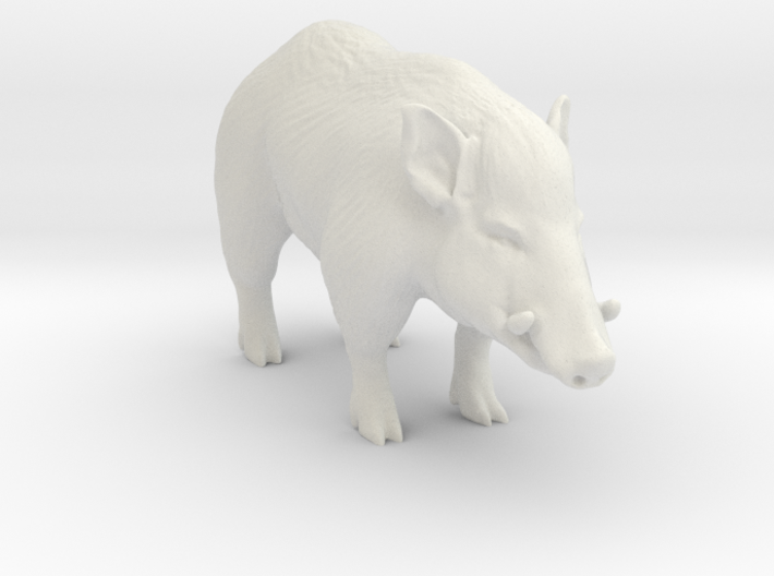 Printle Thing Wildboar - 1/43.5 3d printed