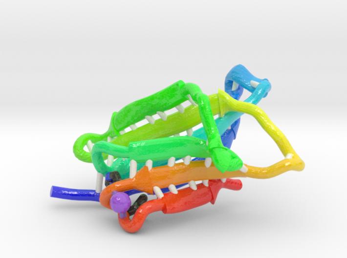 β2Microglobulin 3d printed