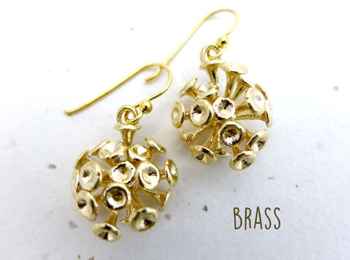 Discosphaera Coccolithophore earrings 3d printed Discosphaera earrings in raw brass