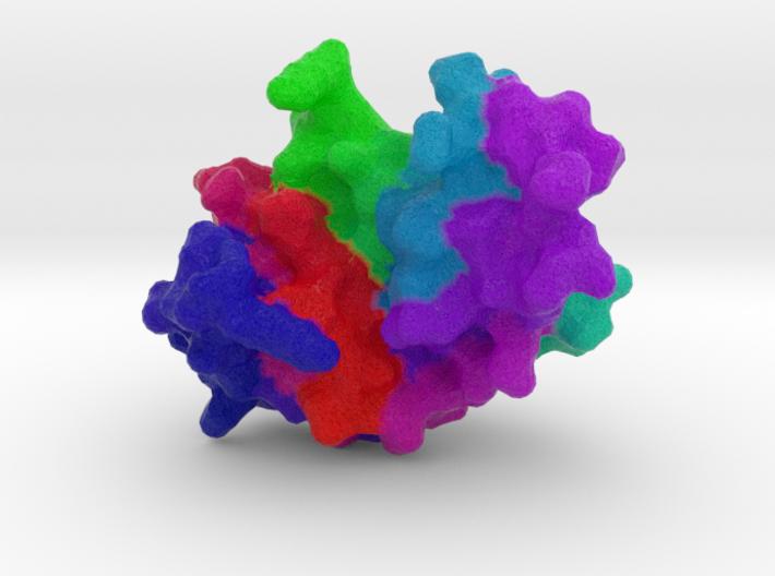 RNase A 3d printed
