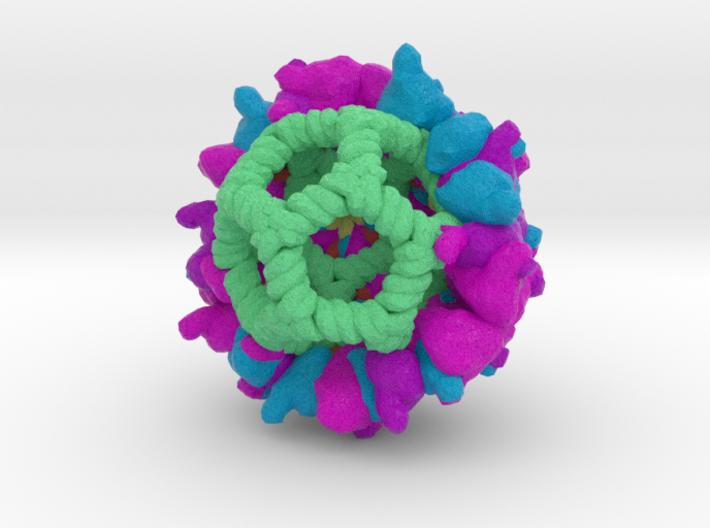 Pariacoto Virus 3d printed