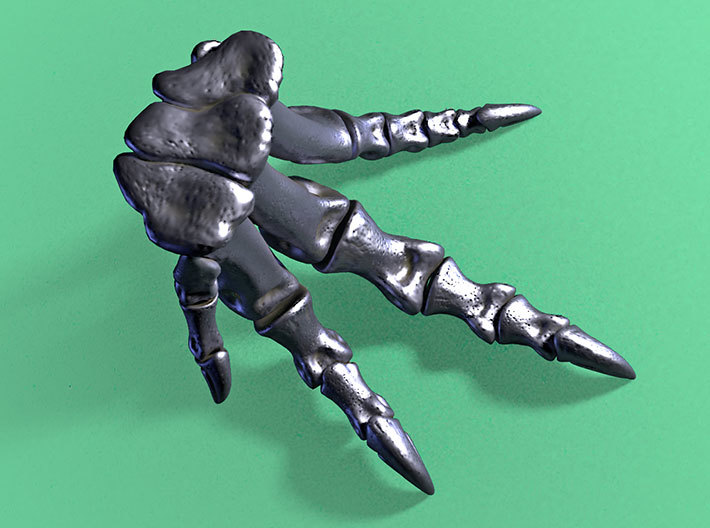 Allosaurus - dinosaur foot model 3d printed top view