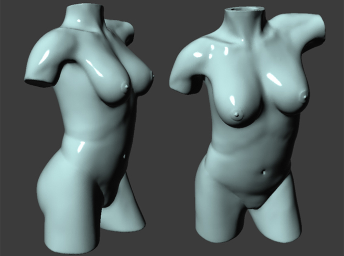 Female Torso Vase 3d printed