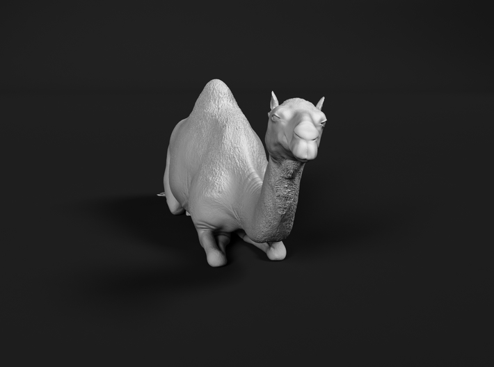 Dromedary 1:160 Lying Female 3d printed