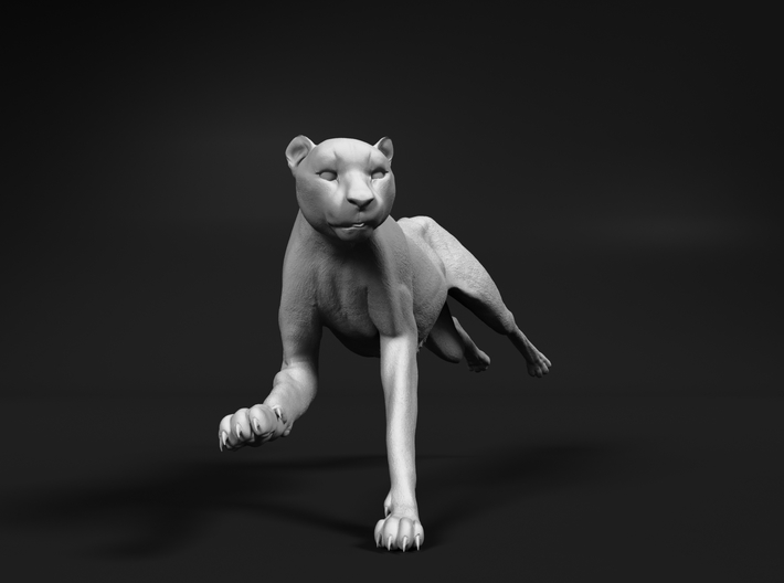 Cheetah 1:72 Running Female 3d printed