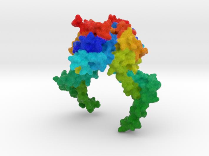 CRISPR-Associated Protein Csn2 3d printed