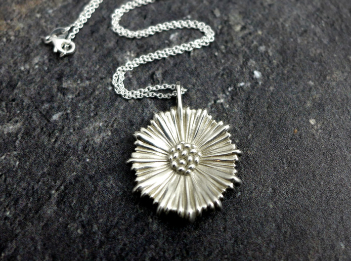 Coral Leptocyathus Pendant - Nature Jewelry 3d printed