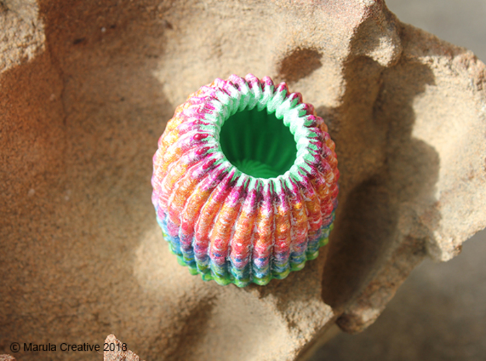 Brain Coral Jewellery Container 3d printed Hand painted White Strong & Flexible Polished