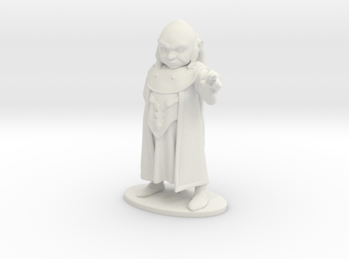 Dungeon Master Miniature 3d printed