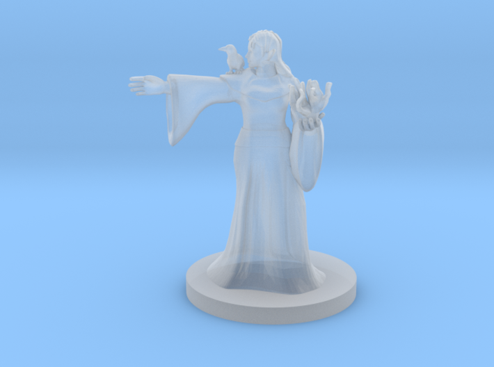 Elven Mage with Raven 3d printed