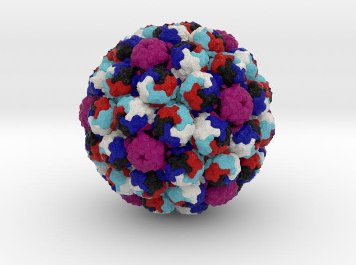 Murine Polyomavirus 3d printed
