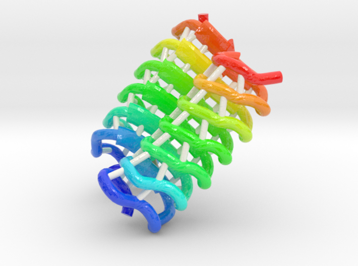 Beetle Antifreeze Protein 3d printed