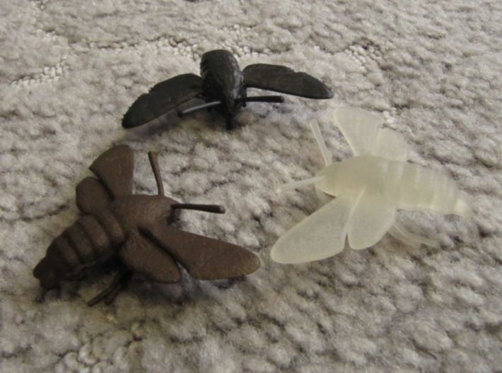 Hummingbird Hawk-Moth Pendant (solid version) 3d printed Black High Definition Acrylate, Frosted Ultra Detail and Matte Bronze Steel (clockwise from the top)