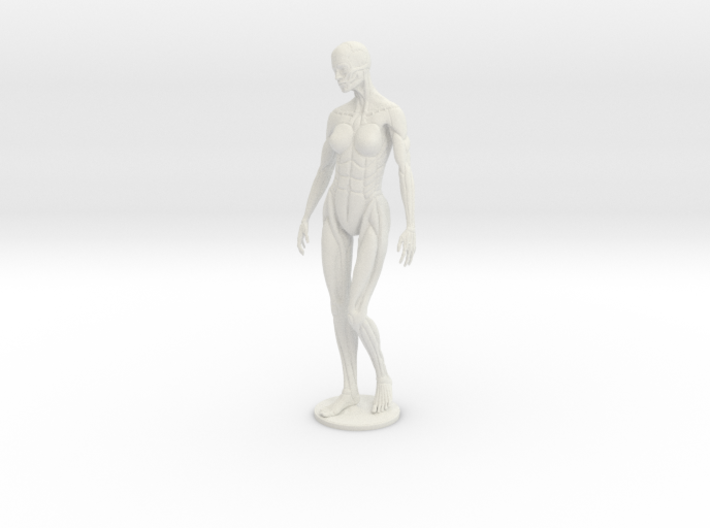 Female form robotic anatomy 12cm 3d printed